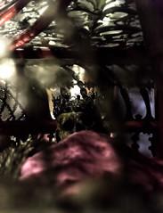 Skull - Palazzo Pitti (ingridworks) Tags: museum death skull krone bones crown tot ausstellung florenz totenkopf palazzopitti knochen fierenze reliquie reliquaries silvermuseum ingridworks argentimuseum