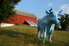 Hopewell Township (GlennCantor (theskepticaloptimist)) Tags: art rural cow newjersey publicart hopewelltownship