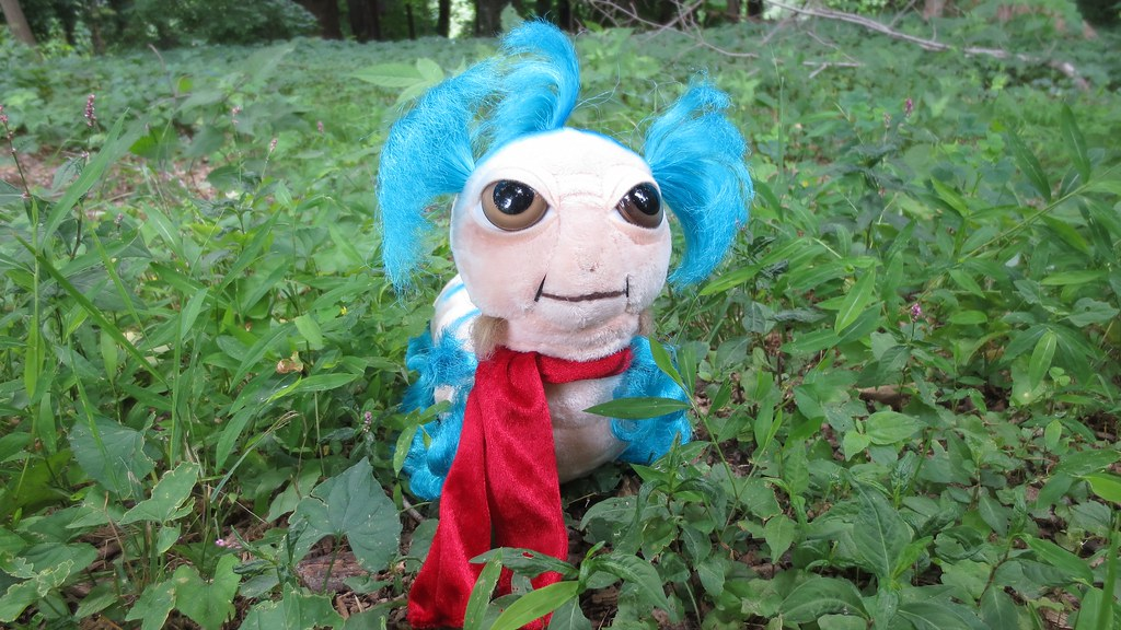 The World's Best Photos of labyrinth and plush - Flickr Hive