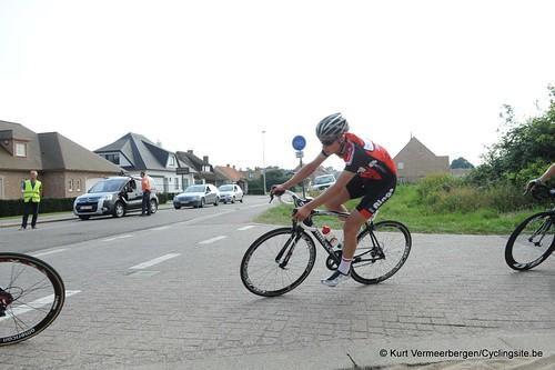 Geel Oosterlo  (245)