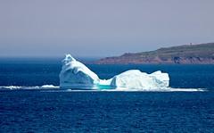 IMG_0761 (natl1046) Tags: newfoundland stjohns maritime iceberg eastcoast