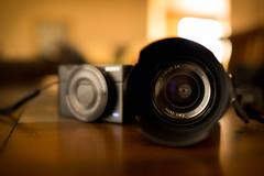 Rx100 & SEL24F18Z (yarnim) Tags: carlzeiss zeiss sel24f18z rx1 rx100 depthoffield electronics camera indoor lens bokeh sony lowlight stilllife 35mm