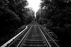Runaway's perspective (Cheyenne Lundgren) Tags: white black train outside dangerous nikon perspective tracks runaway active nikond3200