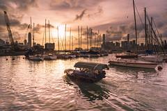 Causeway Bay Typhoon Shelter, HK (mikemikecat) Tags: sunset sea landscape hongkong scenery sony shelter causewaybay typhoon skyblue a7r
