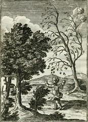 Anglų lietuvių žodynas. Žodis orexis reiškia <li>orexis</li> lietuviškai.