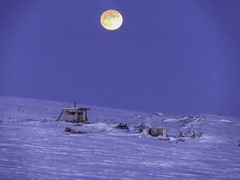 IMG_0888s (savillent) Tags: moon lunar penumbral earth shadow landscape sky snow ice arctic north climate photography canon point shoot camera tuktoyaktuk northwest territories canada astrology february 2017
