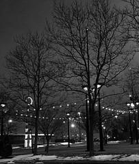 Wintry Night (Heidi(:)) Tags: nighttime 2017 bw downtown iphone