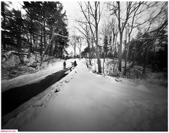 Downhill walkers (DelioTO) Tags: 4x5 adoxchs100 blackwhite d23 desaturated february landscape natparks ontario pinhole rural trails winter woods
