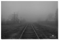 FEBRUARY 2017-020843-22 (Nick and Karen Munroe) Tags: longexposure fog foggy misty winter weather weatherevent mist nisty train traintracks railwaycrossing rail railway cnr landscape brampton ontario canada blackandwhite blackwhite blackandwhitewinter bandw bw monochrome mono nikon nickandkarenmunroe nickmunroe nature nikon2470f28 nikond750 nickandkaren munroedesignsphotography munroedesigns munroephotography munroe karenick23 karenick karenandnickmunroe karenmunroe karenandnick outdoors ontariocanada