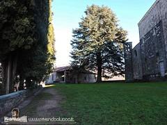BARGA - VIVENDO A LUCCA - DUOMO DI SAN CRISTOFORO (94) (Viaggiando in Toscana) Tags: vivendoaluccait viaggiandointoscanait barga lucca duomo di san cristoforo