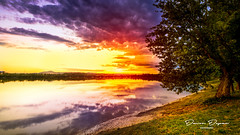 Sunset on the lake (_davor) Tags: croatia dusk hrvatska rakitje water evening lake lakescape landscape nature outdoor spring sunset svetanedelja trees vivid weather