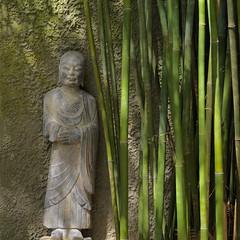 Buddha and bamboo (Tim Ravenscroft) Tags: buddha statue bamboo selby gardens sarasota florida ipsa haddelblad x1d