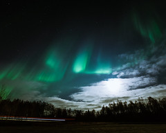 Mystical night (JH') Tags: nikon nikond5300 nature northernlights auroraborealis aurora borealis autumn exposure evening trees tree photoshoot photography sky sigma sweden stars field fall forest heaven landscape longexposure clouds colors green beautiful blue wideangel night