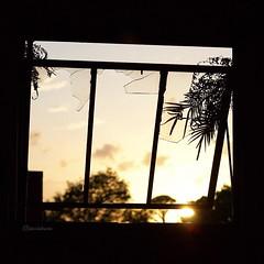 4x4 (jessiebuns) Tags: broken glass window abandoned sunset sunlight cityscape beauty beautiful inanimate tumblr grunge lightroom vsco vscocam