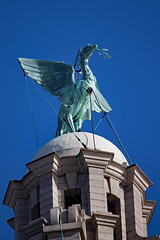 IMG_5719_edited-1 (Lofty1965) Tags: liverpool liverbuilding liverbird