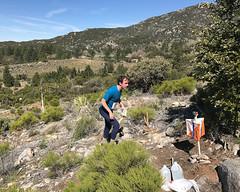 067 Alex Approches (saschmitz_earthlink_net) Tags: 2017 california orienteering campscherman girlscoutcamp sanbernardinonationalforest sanjacintomountains laoc losangelesorienteeringclub
