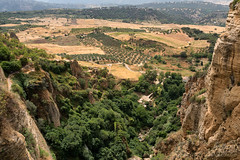 View from Ronda (Andalucia, Spain) (clodio61) Tags: andalucia europe ronda spain architecture building canyon city cityscape color day exterior historic house landmark landscape nature old outdoor photography plant ravine summer town tree urban
