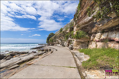 DSC_2362_X (Design Board Photography) Tags: landscapes sea bondibeach beaches designboardphotography