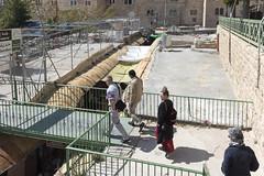 Over the suq, Friendship Garden given by TIPH, Hebron, Palestine (Ingunn Eriksen) Tags: suq friendshipgarden tiph hebron palestine occupation nikond750 nikon