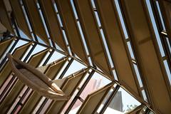 Australian Nacional Museum