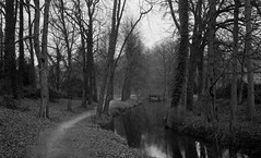 Small path, small river, small village (Rosenthal Photography) Tags: asa400 mehde 20170204 ff135 stadtpark ahe 35mm städte landschaft ilfordhp5 zeven olympus35rd analog bw dörfer siedlungen river village path landscape nature water trees olympus ilford epson v800