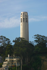 Coit Tower ps (Terryryan1) Tags: coittower sanfrancisco california trees architecture