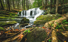 Tucker Brook Falls (Robert Clifford) Tags: falls milford nh newengland newhampshire robertallanclifford robertallancliffordcom tuckerbrookfalls cascade trees water waterfall