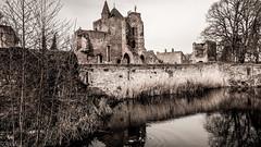 Kasteel Brederode (Ramireziblog) Tags: kasteel brederode santpoortzuid castle ruine wall trees heerlijkheid steen gracht