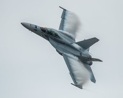 Navy F18 Fast Pass Top (4myrrh1) Tags: navy military fighter aircraft airplane aviation airshow airplanes airport oceana virginia va virginiabeach