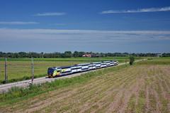 S6 10642 @ Novara (Wesley van Drongelen) Tags: fs ffss ferrovie dello stato fnm nord milano ti trenitalia tn trenord tsr taf servizio regionale s6 novara treni train zug treno