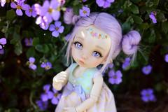 ☆ Purple Flowers ☆ (Shimiro Kestrel) Tags: pukifee ante fairyland pukifeeante bjd abjd cute kawaii tiny tinybjd spring pastel pastelgirl bjdphotography bjdportrait bjdcustom dollphotography