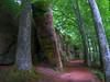 Balade dans les Vosges (Co-jjack) Tags: alsace vosges chemin forêt rochers bois hdrsingleraw hdrenfrancais
