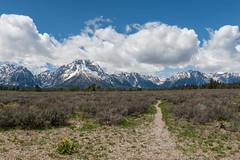 Teton Path (Kevin VanEmburgh Photography) Tags: adventure kevinvanemburghphotography kevinvanemburgh landscape nationalpark nature nikon outdoors outside travel usa west wyoming yellowstone mountains mountainrange tetons tetonrange grandtetonnationalpark clouds wideopensky outdoor path trail trailrunning