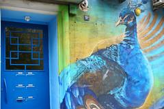 peacock graffiti (radailieva) Tags: graffiti peacock blue door art streetart sofia bulgaria