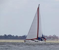 Yacht (Bernie Condon) Tags: sea water sailing yacht solent sail yachts calshot southamptonwater