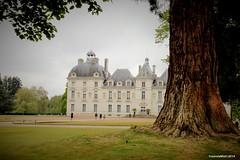 Cheverny, castle of the Loire valley (Yolanda Miel) Tags: france castle centre tintin chteau cheverny loiretcher herg capitainehaddock moulinsart sologne monumenthistorique chteaudelaloire yolandamiel chteauxoftheloirevalley