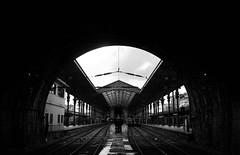 Somebody Is Coming, Somebody Is Going (Ai in Technicolor) Tags: white portugal station going trains porto balck coming stazione bianco nero comboio treni saobento vsco vscocam portogallobw