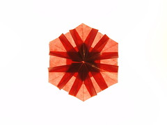 red01 (qrtello) Tags: snowflake star origami transparent