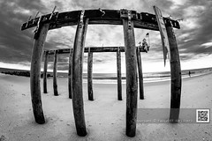 Monument (paulo007) Tags: ca wood sky bw beach sand nikon angle sandy hurricane wide nj fisheye cropped 35 8mm d800 oceangrove rokinon