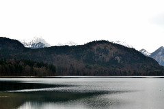(Daphne Folliero) Tags: trip trees winter sky lake snow cold green castle me nature water clouds river germany photography photo spring nikon europe mine shadows monaco munchen letitsnow snowlandscape schooltrip baviera