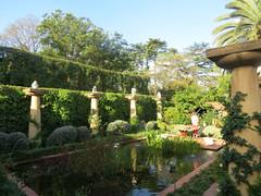 Garden of Minky Lidchi