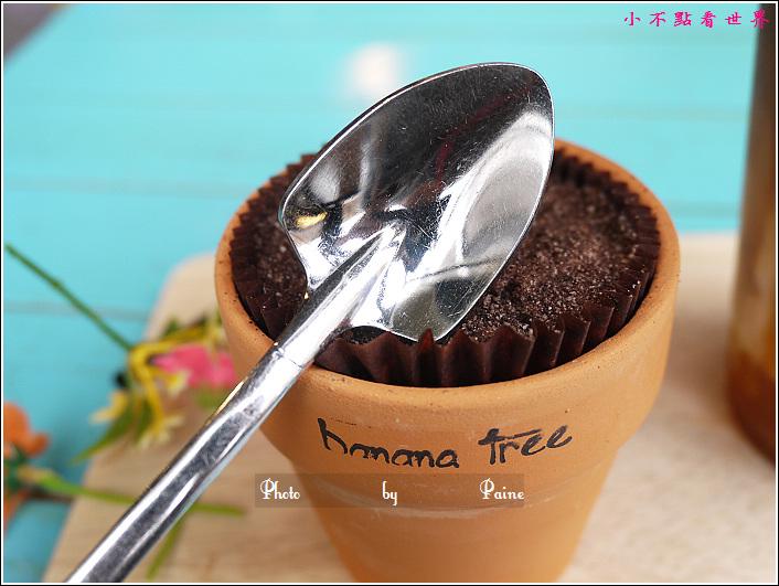 新沙洞banana tree cafe (36).JPG