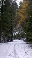 2011-11-22_14-18-12_69