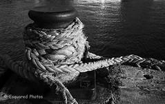 Ropes&bollard (esquared_photos) Tags: 2005 film mono blackwhite australia ropes bollard textured bwfilm leicam3 wollongongharbour