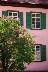 Spring colours (Navas) Tags: house germany lilac shutters badenwuerttemberg badwimpfen