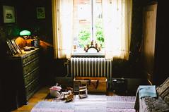 skansen (f x d b b b t) Tags: travel europe fuji sweden stockholm fujifilm scandinavia x100 2013 skanssen