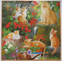 Golden Cats in the Sun (Persis Clayton Weirs) (Leonisha) Tags: cats chat kittens puzzle katzen jigsawpuzzle ktzchen