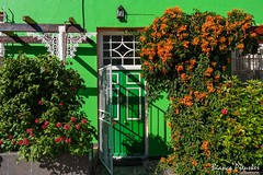 What's Behind the Green Door? (biancapreusker) Tags: africa street door city travel flowers orange house green southafrica capetown photowalk colourful malay bokaap thechallengefactory capetownphototours