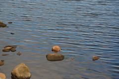 Urlaub Dnemark 2014 (bunkertouren) Tags: strand boot sand meer wasser hand urlaub wolke wolken boote steine fjord gras tau hafen stein dnemark havn schiff welle schiffe segelboot schilf wassertropfen felsen glocke wellen grser handschuh segelboote borkhavn schiffsglocke