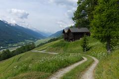 Gommer Hhenweg . 2014 (Toni_V) Tags: alps landscape schweiz switzerland europe suisse hiking rangefinder alpen svizzera wallis valais wanderung m9 2014 svizra goms summiluxm obergoms 35mmf14asph 35lux messsucher toniv leicam9 140614 gommerhhenweg l1016759 oberwaldbellwaldfrgangen